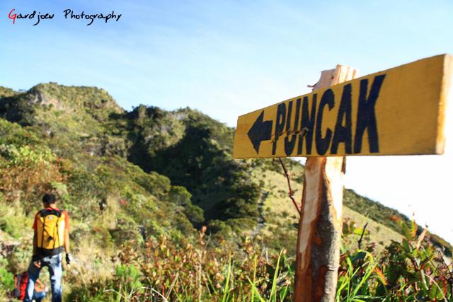 Jalan ke puncak Hargo Dumilah, Puncak tertinggi Gunung Lawu, 3265 mdpl