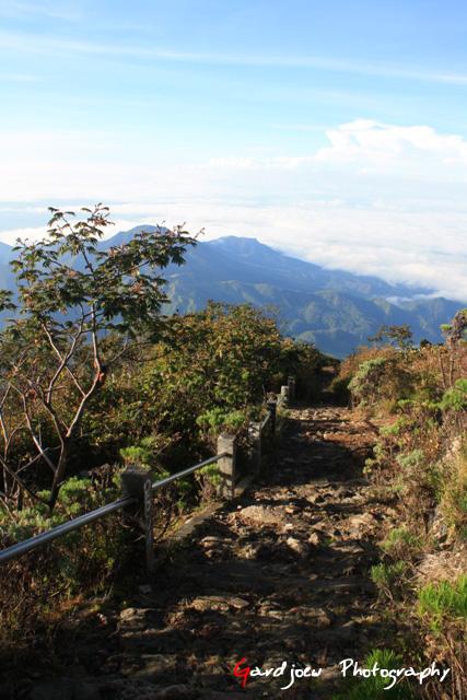 rute pendakian yang sudah sangat rapi :)