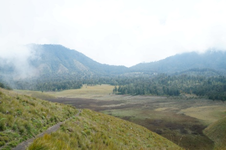 View Oro-oro ombo dari atas bukit tanjakan cinta