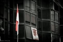 Hanging Flag (BASH2014)