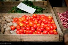Tomato (BASH2014)