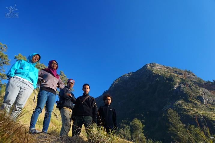 My Team